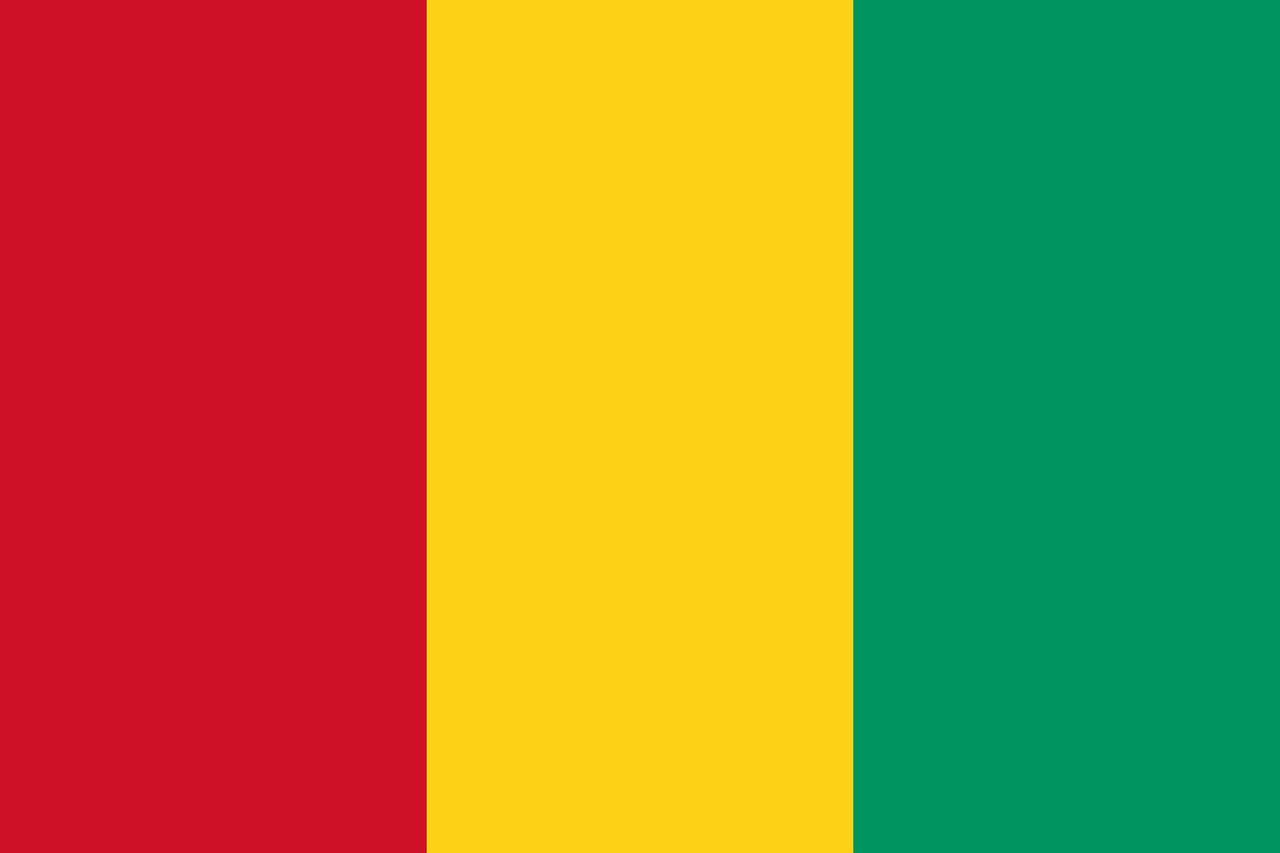 Guinea Flagge