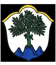 Aschau im Chiemgau Wappen