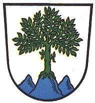 Aschau Wappen