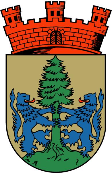 Dannenberg (Elbe) Wappen