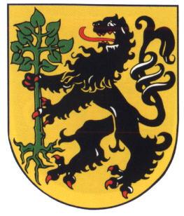 Eisfeld Wappen