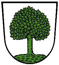 Kötzting Wappen