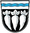 Pfatter Wappen