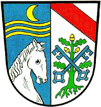 Pocking Wappen