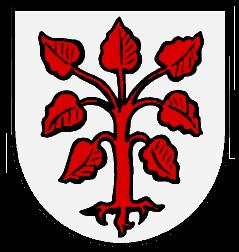Rottenbuch Wappen