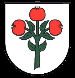 Schwarzach Wappen